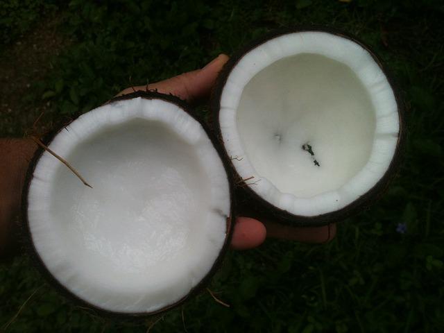 weisses Palmöl der Kokosnuss