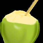 kokosnuss und kokoswasser