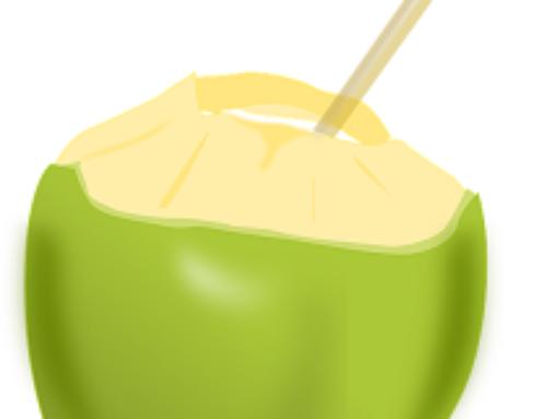 Kokoswasser gesund? Test und Vergleich