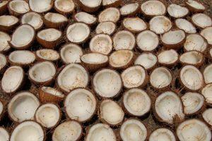 kokoswasser kaufen unsere kaufberatung