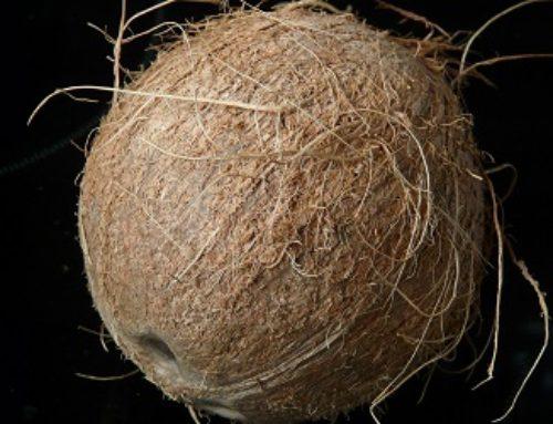12 Gründe für die Verwendung von Kokosöl