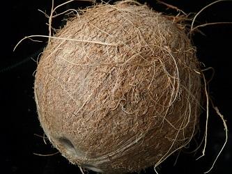 12 positive gruende fuer kokosoel